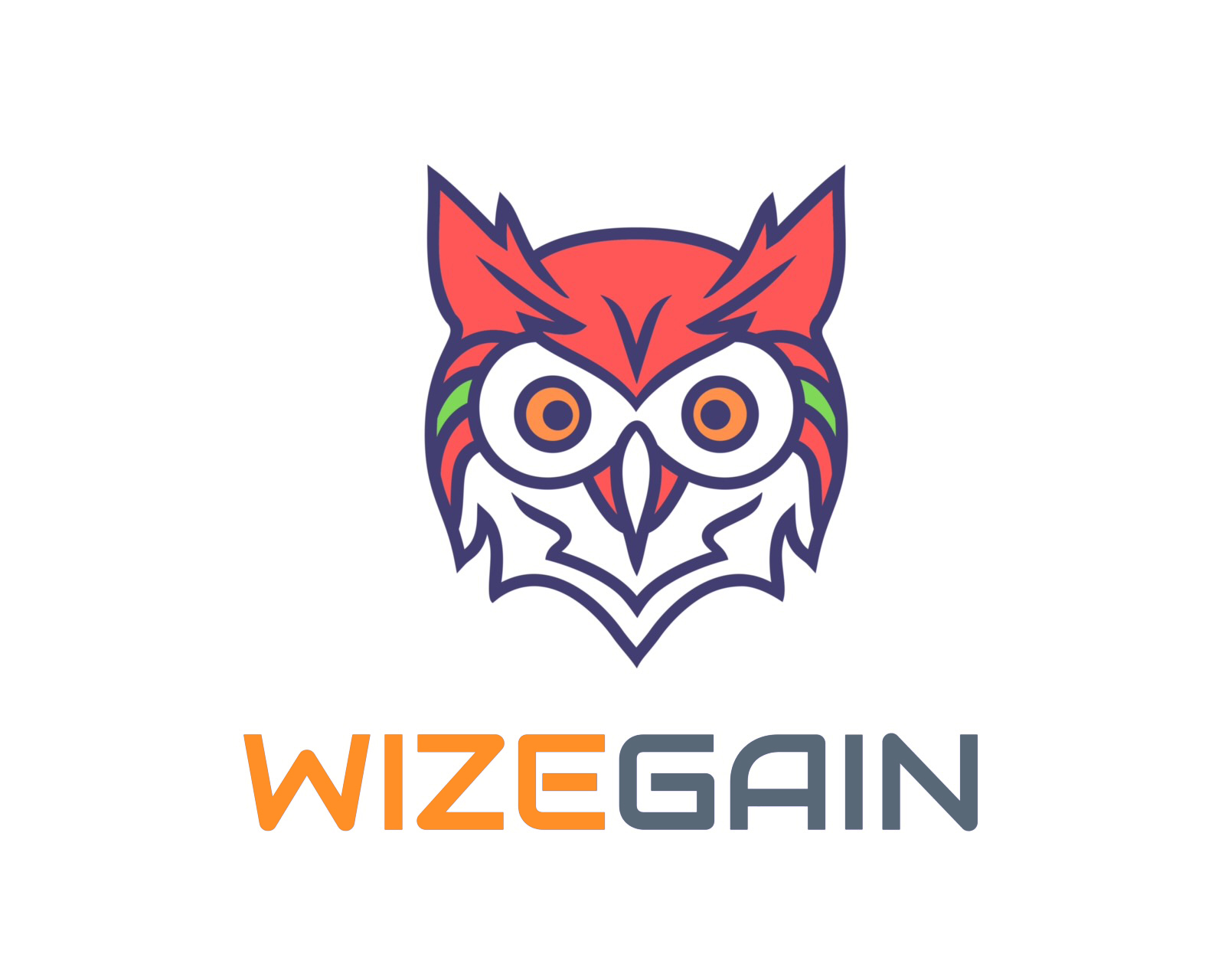 Wizegain Logo